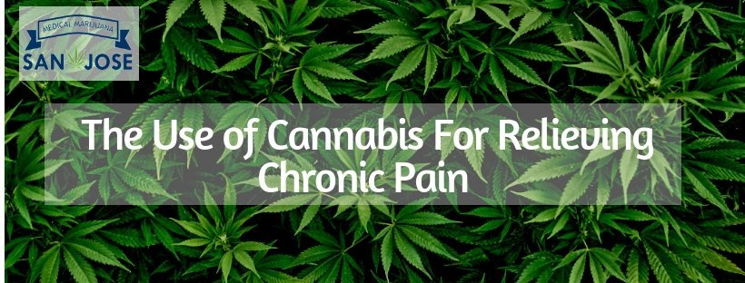 Cannabis For Relieving Chronic Pain