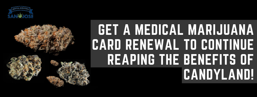 Get A Medical Marijuana Card Renewal To Continue Reaping The Benefits Of Candyland!