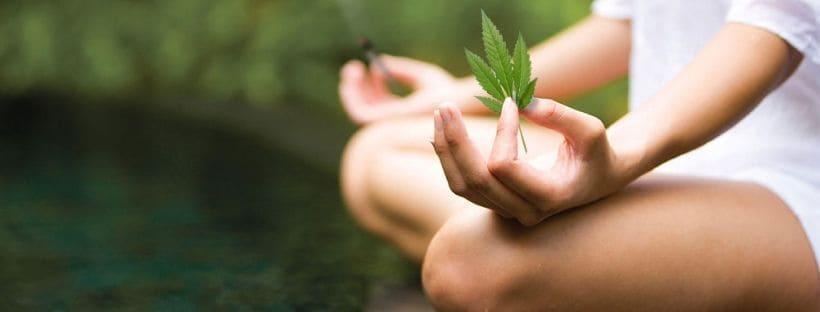 Marijuana and meditation_ Best Practices for Mindfulness
