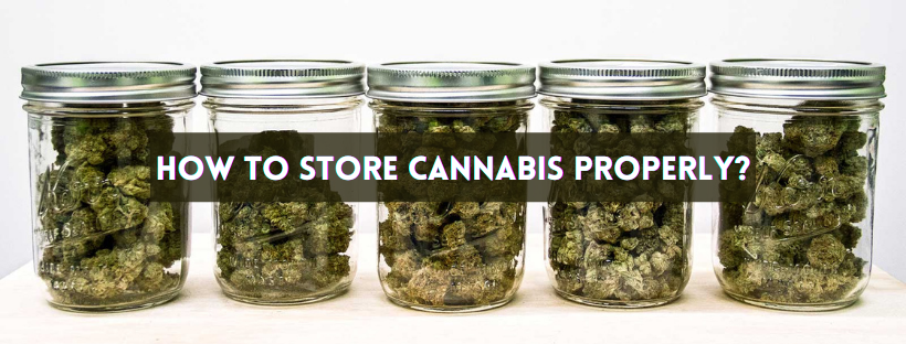 How to Store Cannabis Properly?